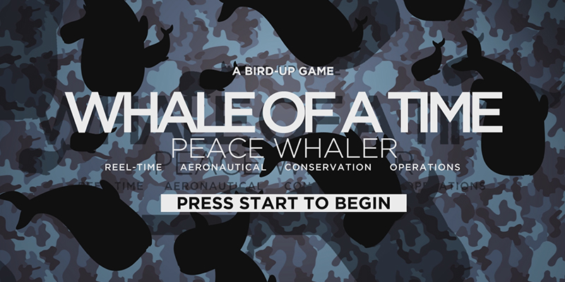 Whale Of A Time: Peace Whaler